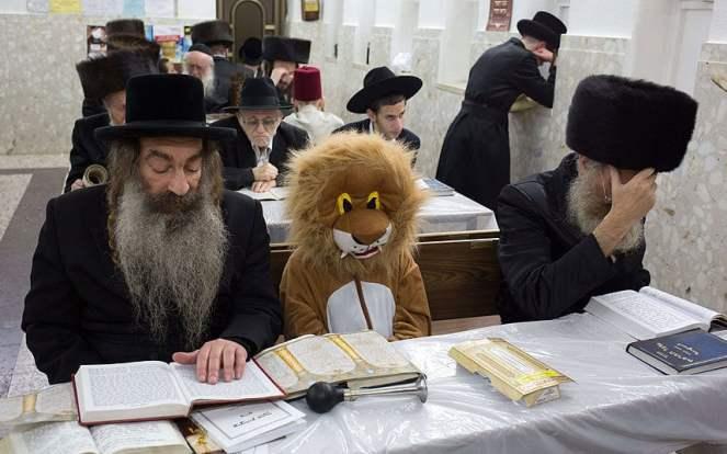 2.22.18 lent Purim_lion_in_Syna_3221317k.jpg