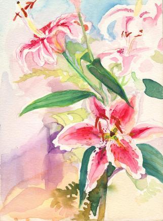 pink-stargazer-lilies-nancy-watson